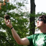 ahh-the-pinecone-bird-feeder